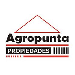 Agropunta Propiedades