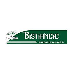 Bistiancic Propiedades